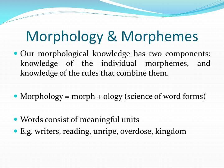 morphology morpheme and word
