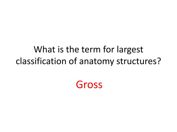 PPT - ANATOMY & PHYSIOLOGY DAY 2 PowerPoint Presentation - ID ...