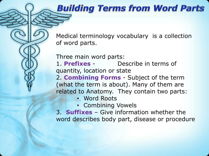 PPT - Medical Terminology PowerPoint Presentation - ID:2318532