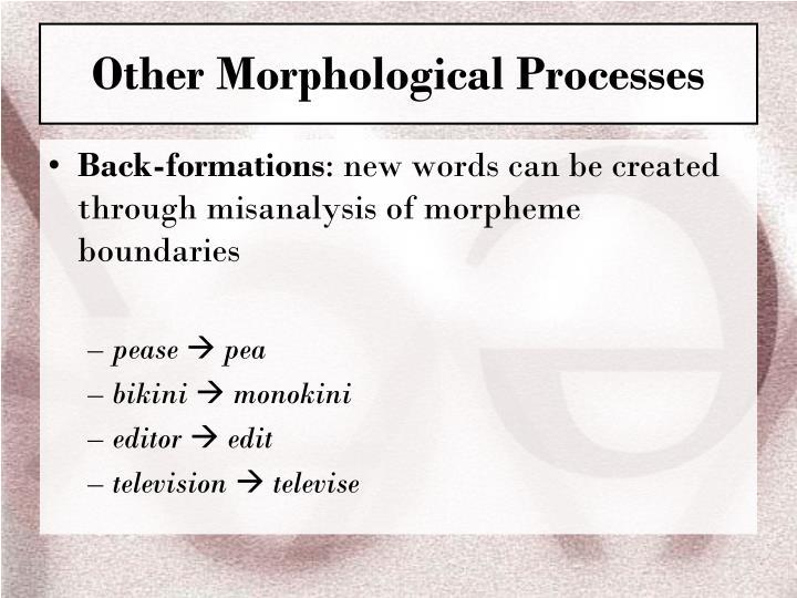 Other Morphological Processes