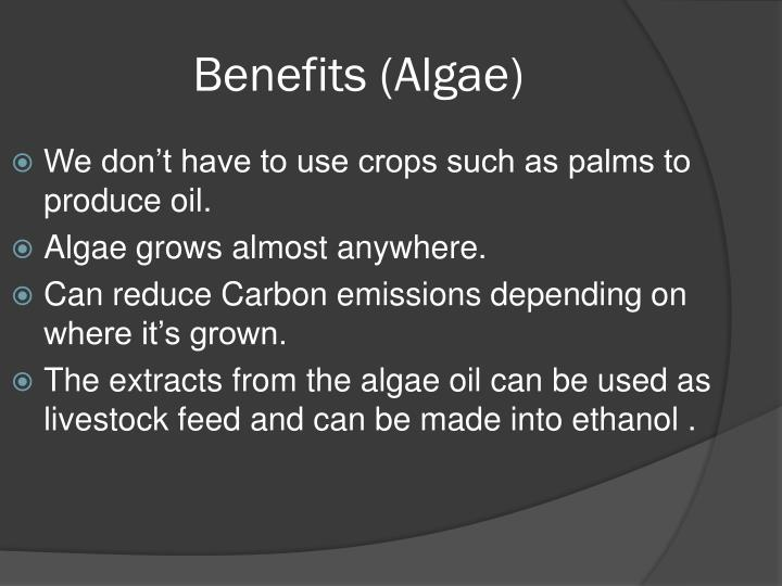 Benefits algae
