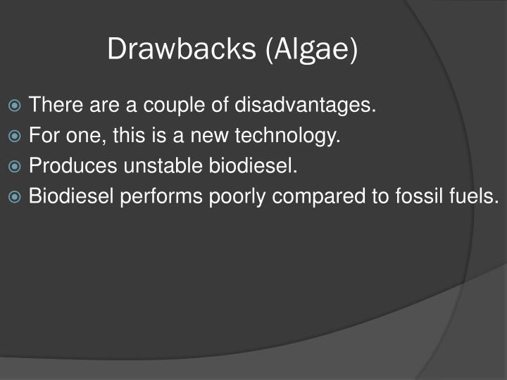 Drawbacks (Algae)