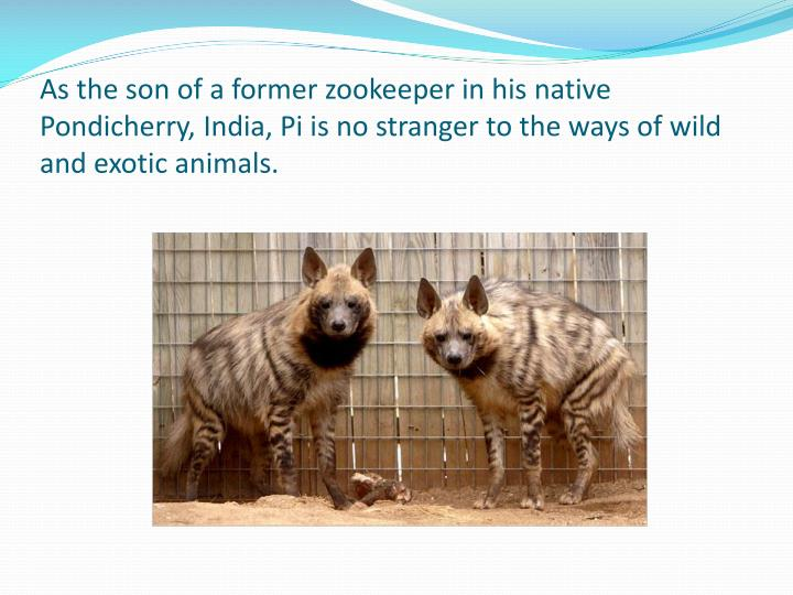 As the son of a former zookeeper in his native Pondicherry, India, Pi is no stranger to the ways of wild and exotic animals.