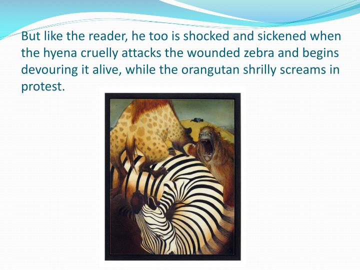 But like the reader, he too is shocked and sickened when the hyena cruelly attacks the wounded zebra and begins devouring it alive, while the orangutan shrilly screams in protest.
