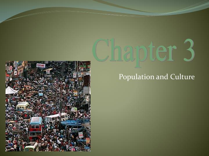 population and culture n.