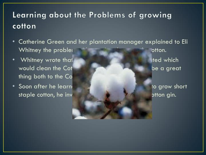 Learning about the Problems of growing cotton