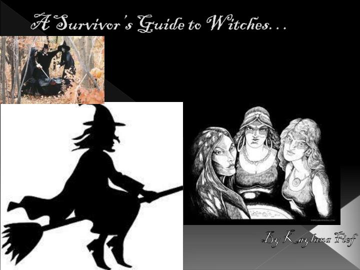 a survivor s guide to witches n.