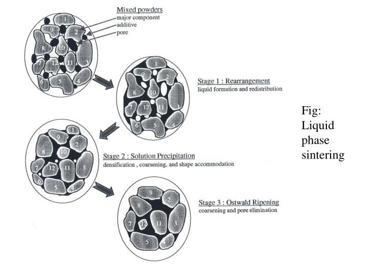Fig: Liquid phase sintering