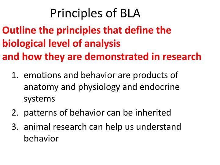 Principles of BLA