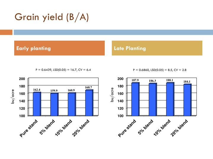 Grain yield