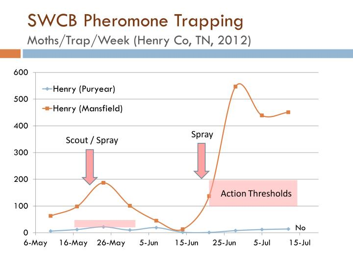 SWCB Pheromone Trapping
