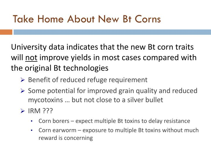 Take Home About New Bt Corns