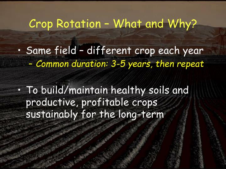 Crop rotation what and why