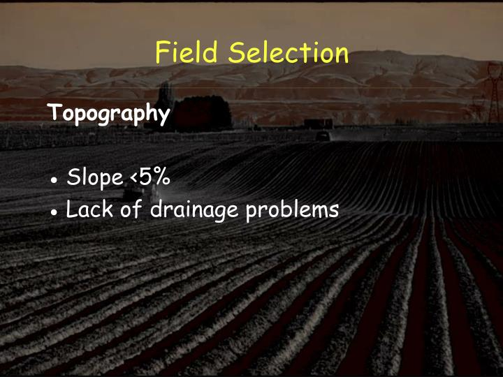 Field Selection