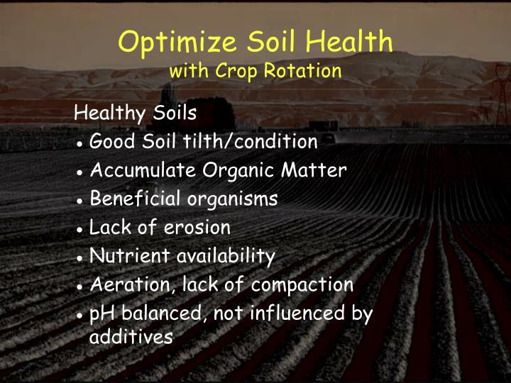 Optimize Soil Health