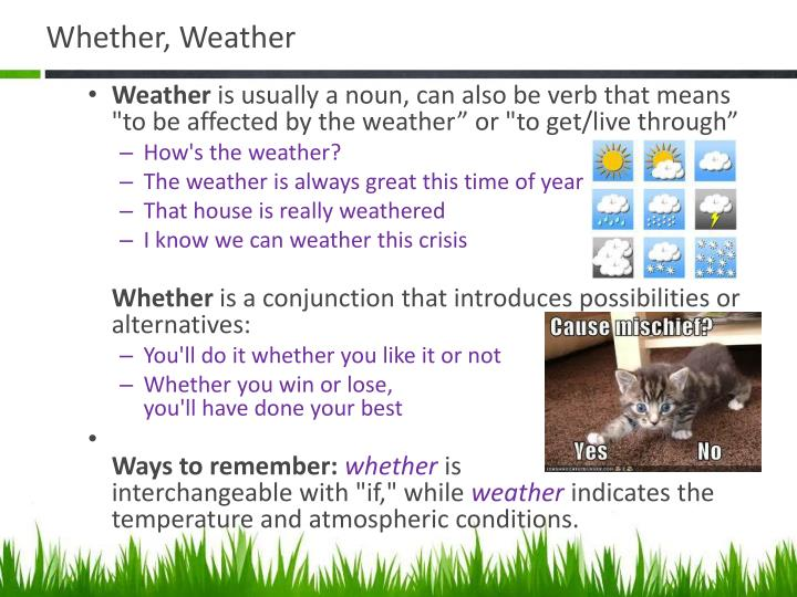 Whether, Weather
