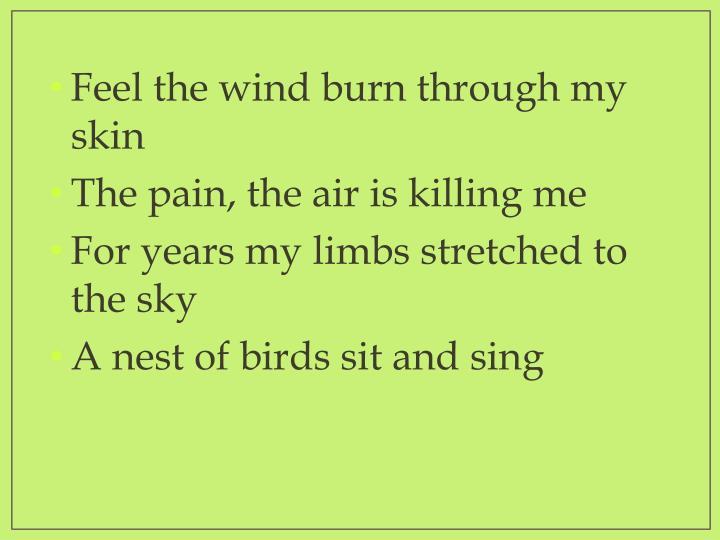 Feel the wind burn through my skin