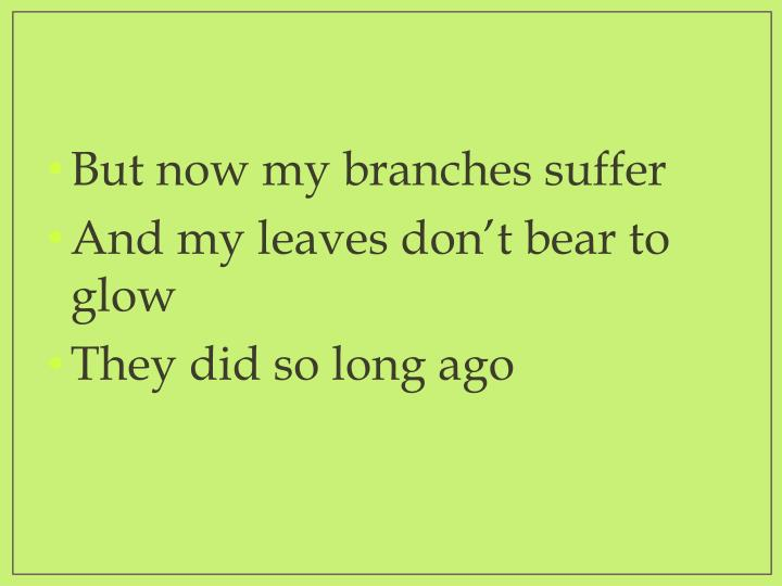 But now my branches suffer