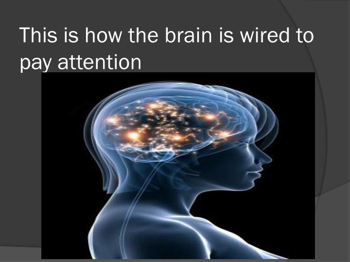 This is how the brain
