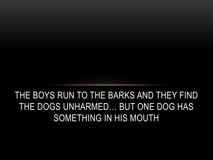 The boys Run to the barks and they find the dogs unharmed… but one dog has something in his mouth