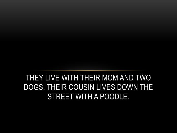 They live with their mom and two dogs. Their cousin lives down the street with a poodle.
