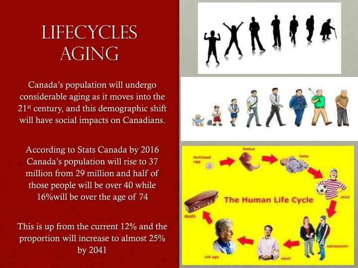 lifecycles aging n.