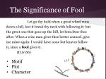 the significance of fool29