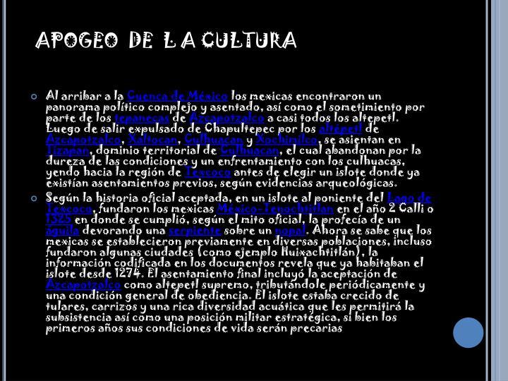 APOGEO  DE  L A CULTURA