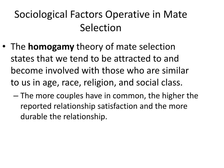 mate selection theories sociology