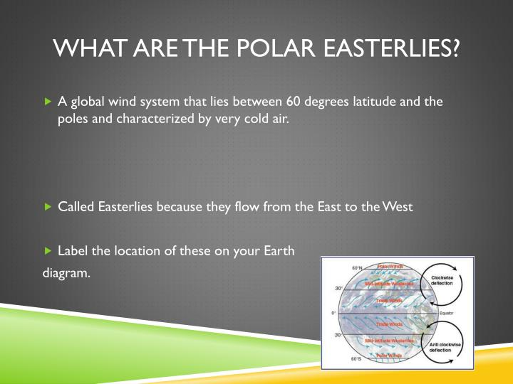 What are the polar easterlies?