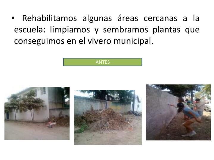 Rehabilitamos algunas áreas cercanas a la escuela: limpiamos y sembramos plantas que conseguimos en el vivero municipal.