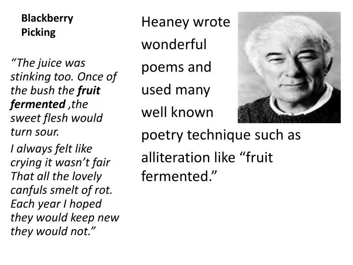 seamus heaneys blackberry picking and death of Below is an essay on comparing 'death of a naturalist' to 'blackberry picking' seamus heaney from anti essays, your source for research papers, essays, and term paper examples essay question - 'examine heaneys poetic technique in two poems which deal with nature.