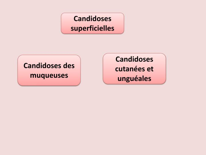 PPT - Candidoses PowerPoint Presentation - ID:2326734