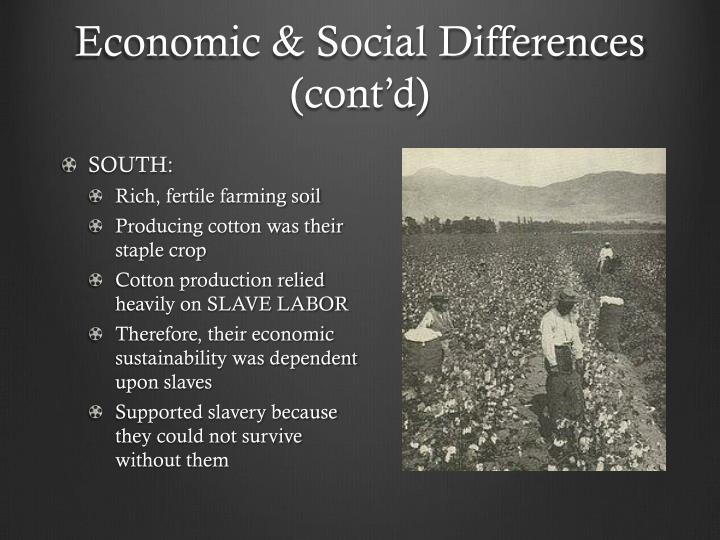 Economic & Social Differences