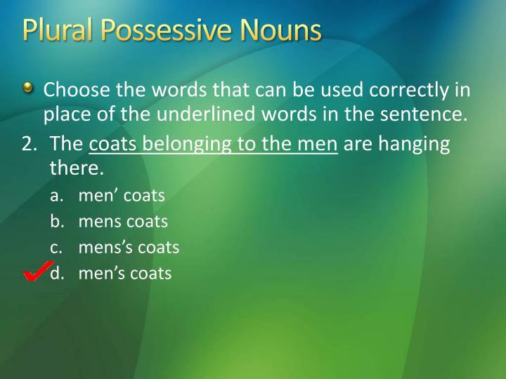 Plural Possessive Nouns