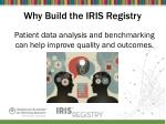 why build the iris registry