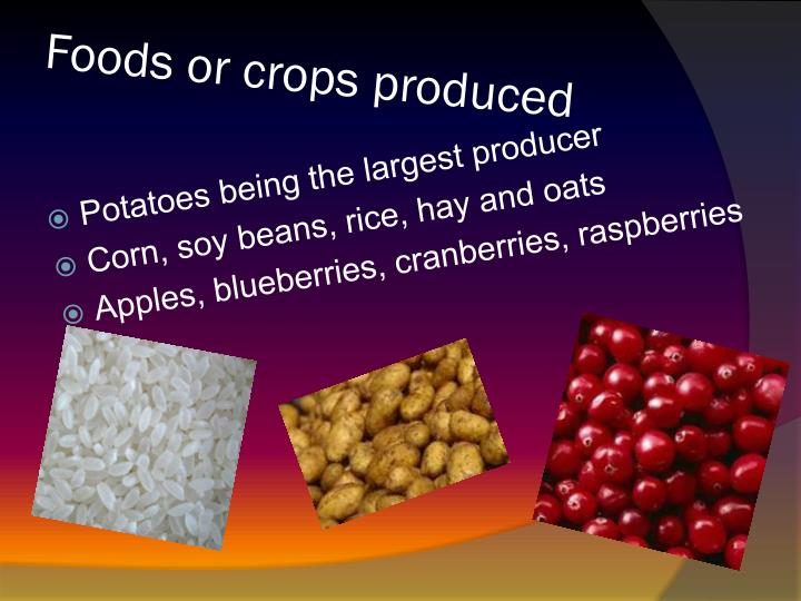 Foods or crops produced