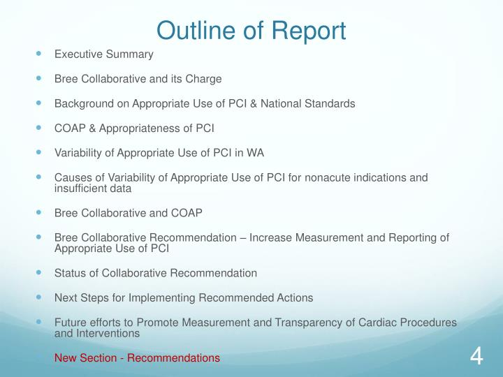 Outline of Report