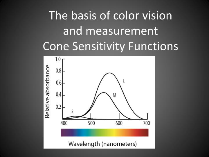 The basis of color vision