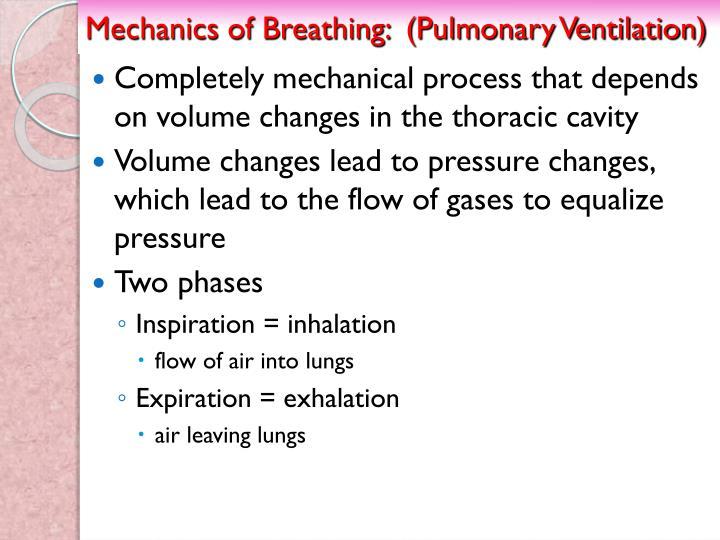 Mechanics of Breathing:  (Pulmonary Ventilation)