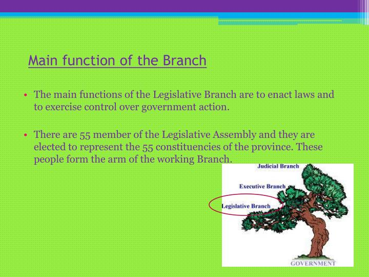 Main function of the branch