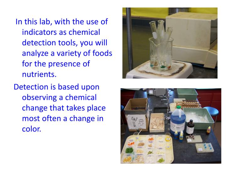 lab identifying macromolecules in food july Functional properties of food macromolecules functional properties of food macromolecules is wrote by se hill release on 1998-08-31 by springer science & business media, this book has 348 page count that contain important information with easy reading experience.