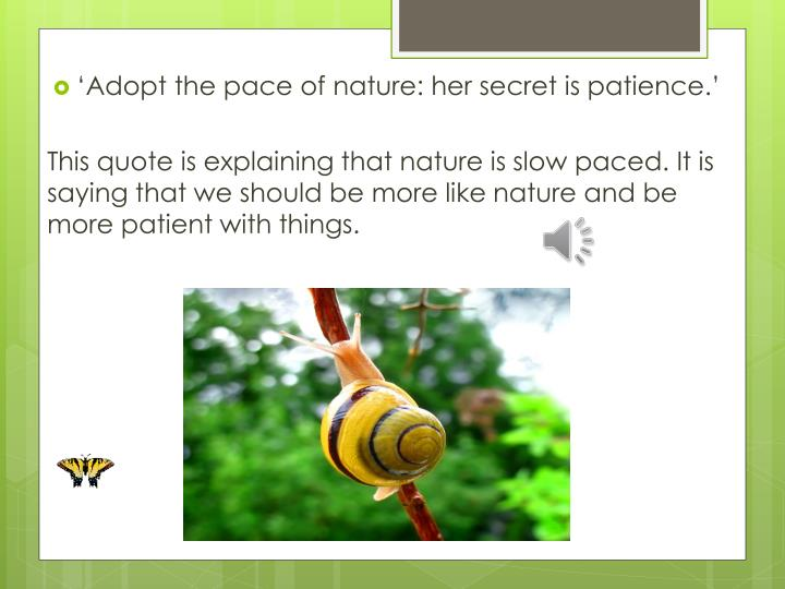 'Adopt the pace of nature: her secret is patience.'