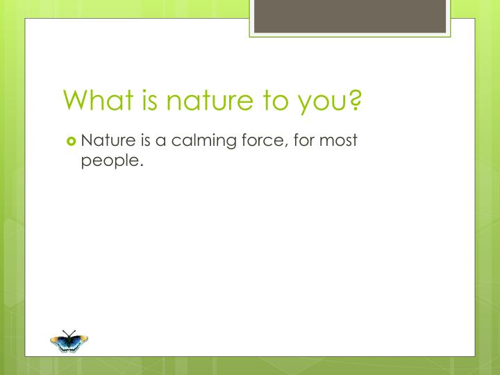 What is nature to you?