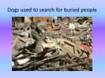 dogs used to search for buried people