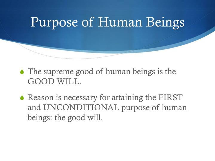 Purpose of Human Beings