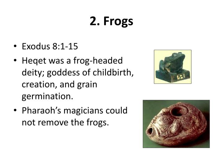 2. Frogs