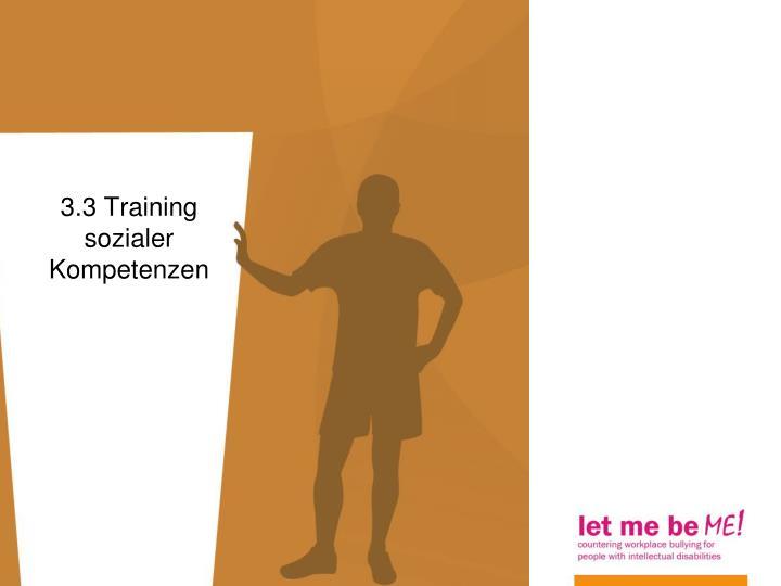 3.3 Training