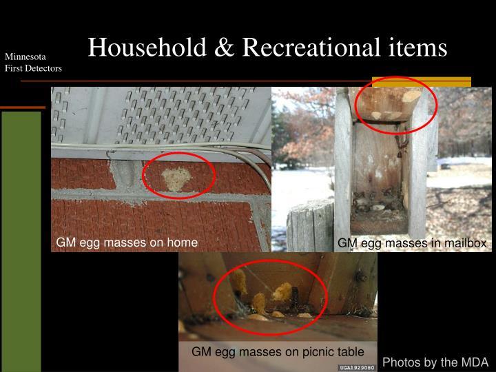 Household & Recreational items