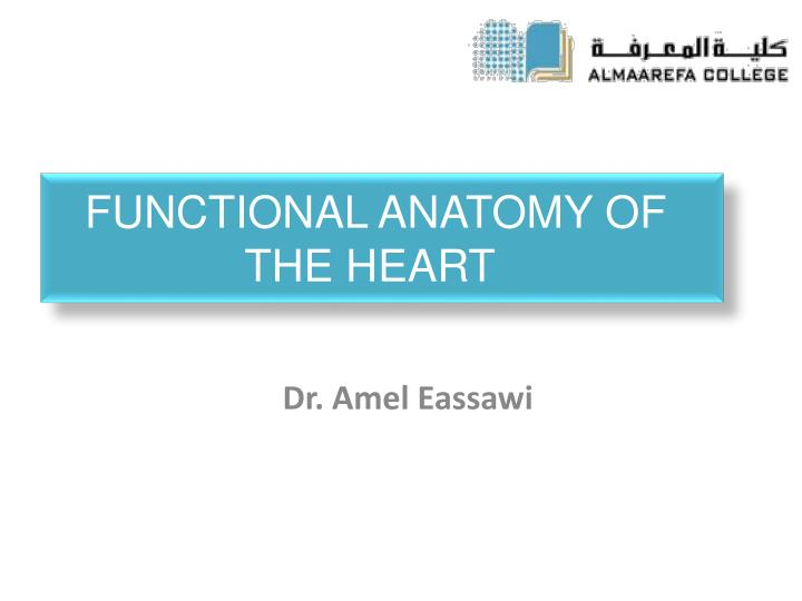 PPT - Functional Anatomy of the Heart PowerPoint